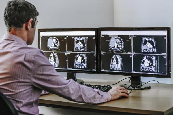 Blackford Analysis Software Development Kit SDK Advanced Visualization RSNA 2014